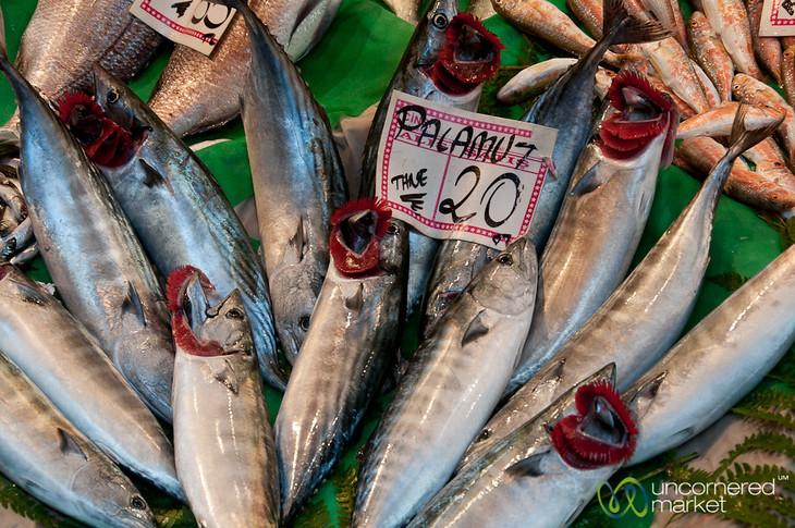 Fish Stand Near Istiklal Avenue - Istanbul, Turkey