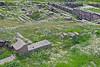 Pergamon Ruins in a field of daisies~Bergama, Turkey