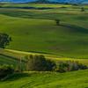 Tuscany-7986x