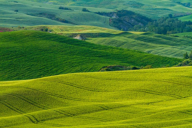 Tuscany-5579z