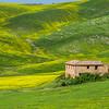 Tuscany-8508-02z