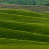 Tuscany-5675-01z