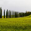 Tuscany-6491-01z