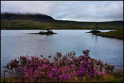 Loch Assynt at sunrise