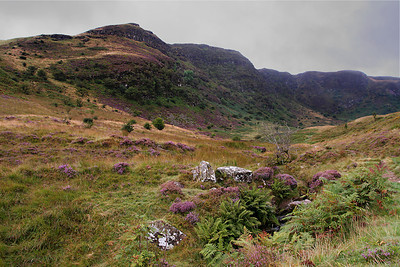 Craig-Cerrig-gleisiad a Fan Frynych Nature Reserve