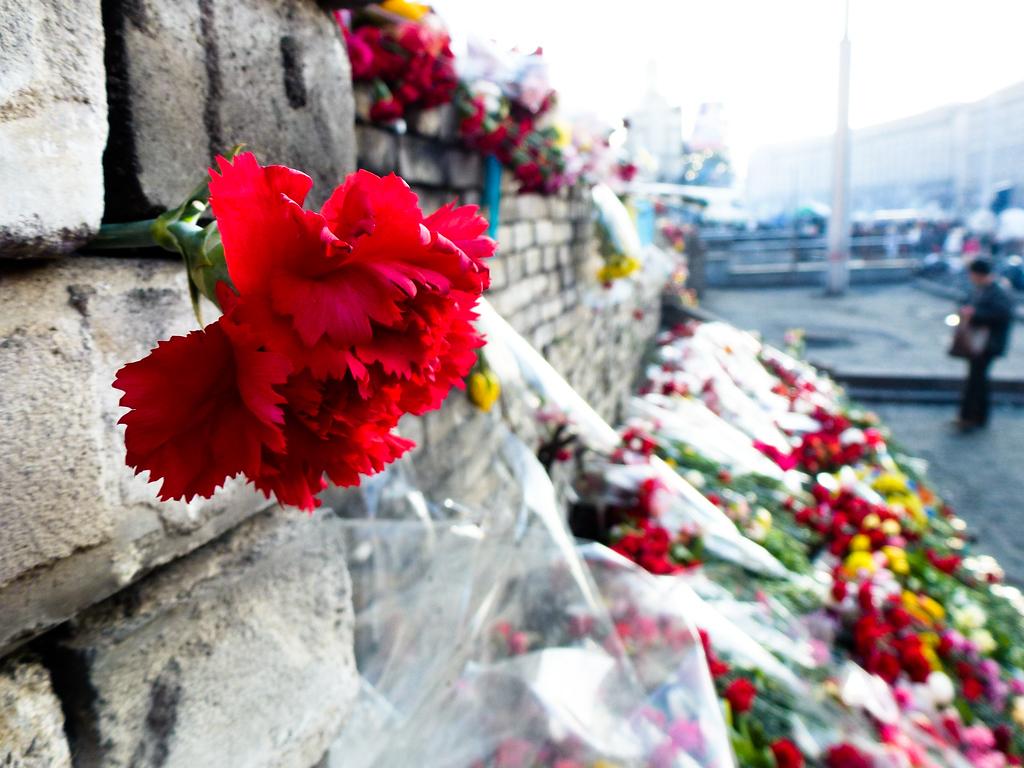 kiev maidan flowers