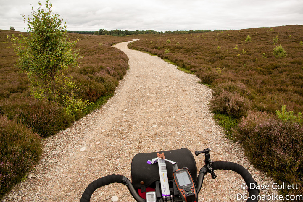 Nice off-road riding