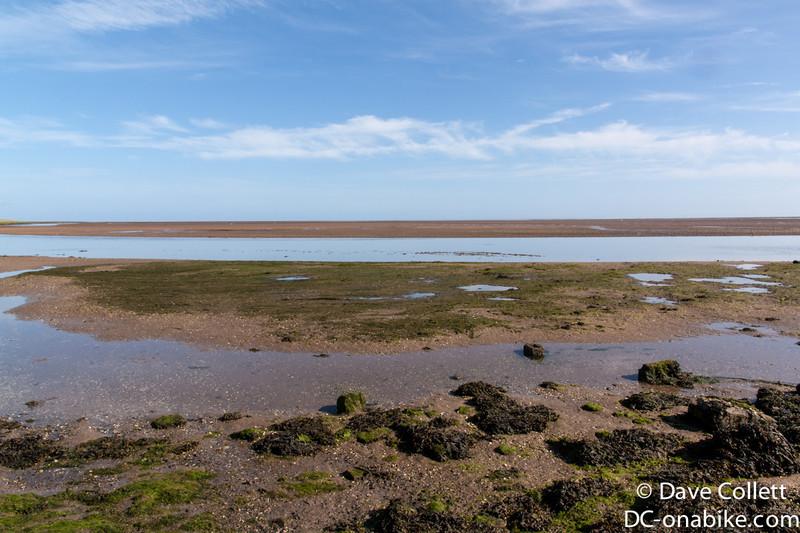 Intertidal zone..
