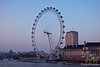 London Eye Evening