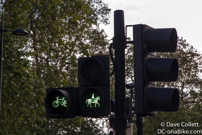 Horse crossing…