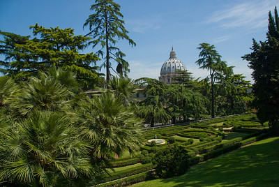 The Vatican City Gardens and St Peter's Basilica dome