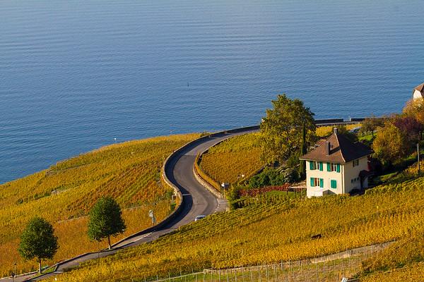 Vineyards around Lavaux, Switzerland