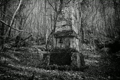 Unit monument deep in woods, Verdun Sector German Pioneers