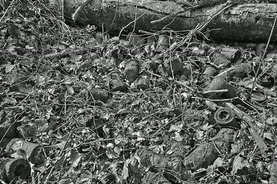 Detritus of war German grenade dump, Argonne Forest, 2012