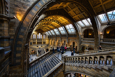 British Museum of Natural History