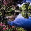 Claude Monet's Gardens - Giverny, France 2<br /> © Sharon Thomas