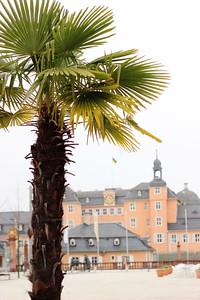 Schloss hinter Palmen