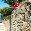 A rock wall with plants and flowers on the top in Mykonos, Greece,