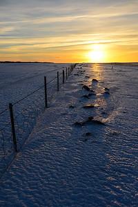 Iceland Fields I