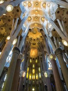 Ceiling of Sagrada Familia