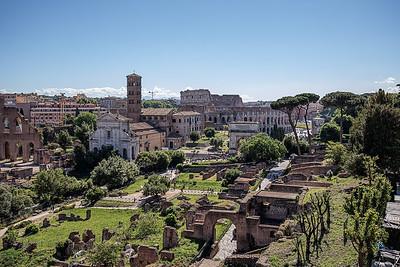 Forum_Colosseum_0182_2800