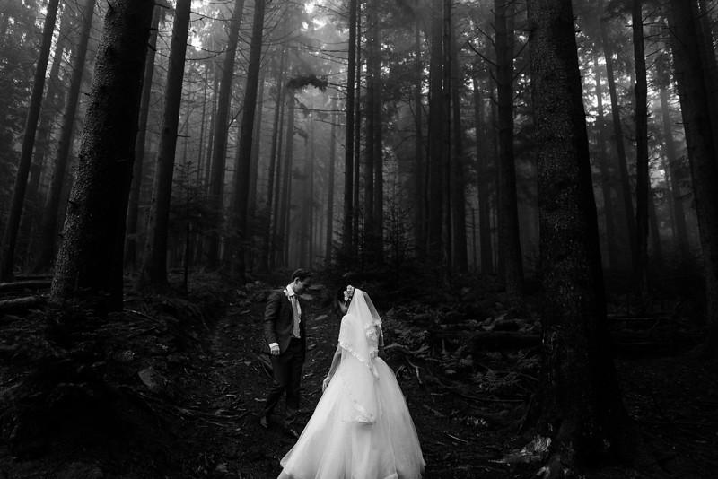 Elopement Wedding in Black Forest