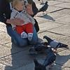 baby&doves