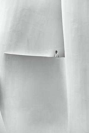 Guggenheim View