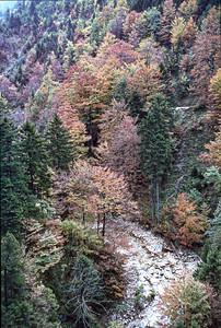 T11-Bavaria2-047