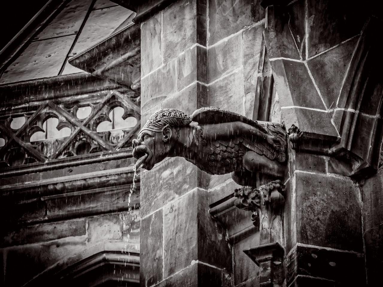 St. Vitus Church Gargoyle, Prague (Praha), Czech Republic  II