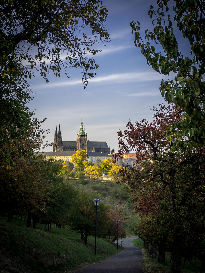 View of the Royal Palace and St. Vitus Church, Prague, Czech Republic
