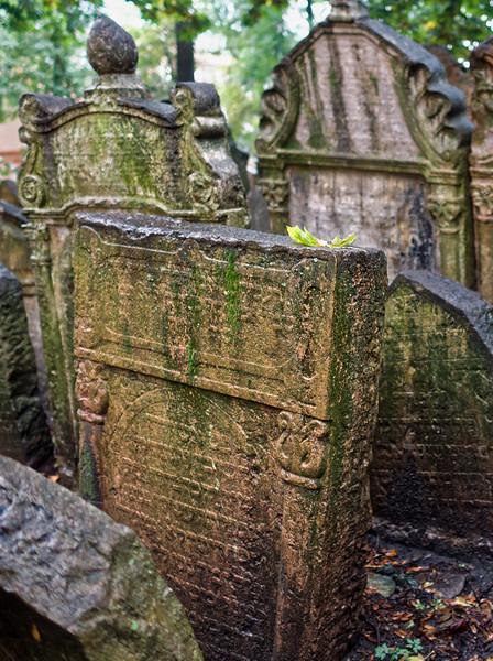 Jewish Cemetary, Prague (Praha), Czech Republic  IV