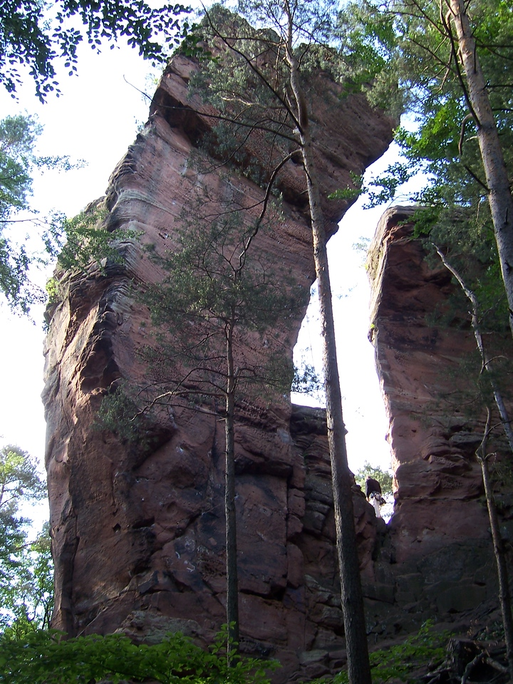 Came upon this stunning pillar while out looking for a bouldering area which we never found.  It is called Honigfels which means something like honeycomb.  The side you are looking at has the hardest climbs of the tower and is slightly overhung.  It is also filled with honeycomb holes, esp. near the top.
