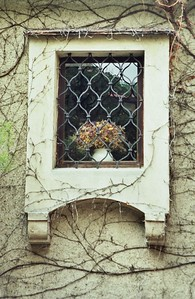 Window, Durnstein, Austria