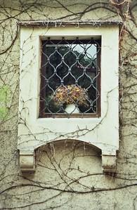 Window, Durnstein, Austria