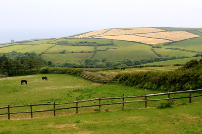 Devon countryside, England