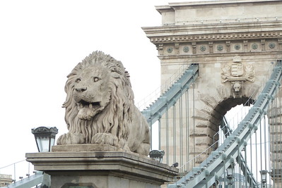 Lion statue at the end of the Chain Bridge, linking Buda and Pest, Budapest, Hungary