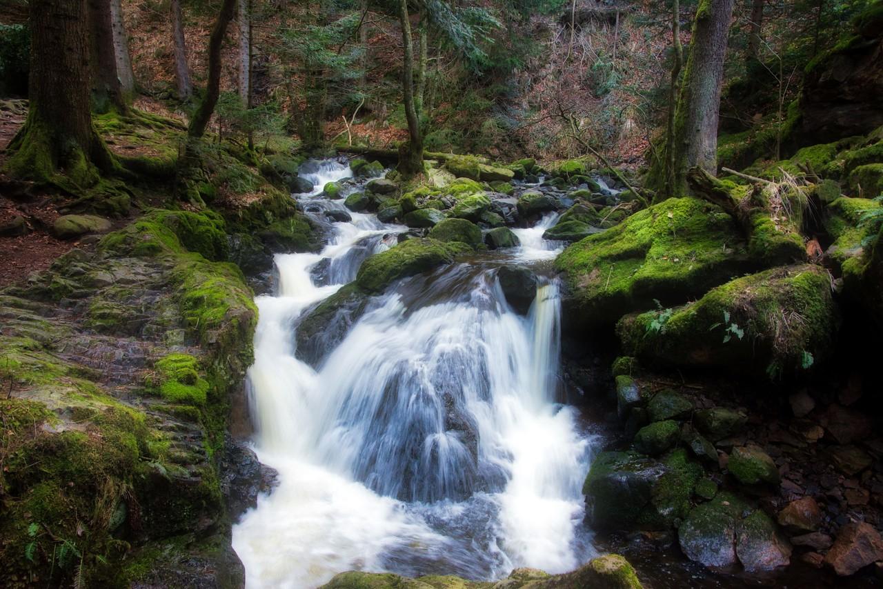 Little Ravenna Falls, Black Forrest