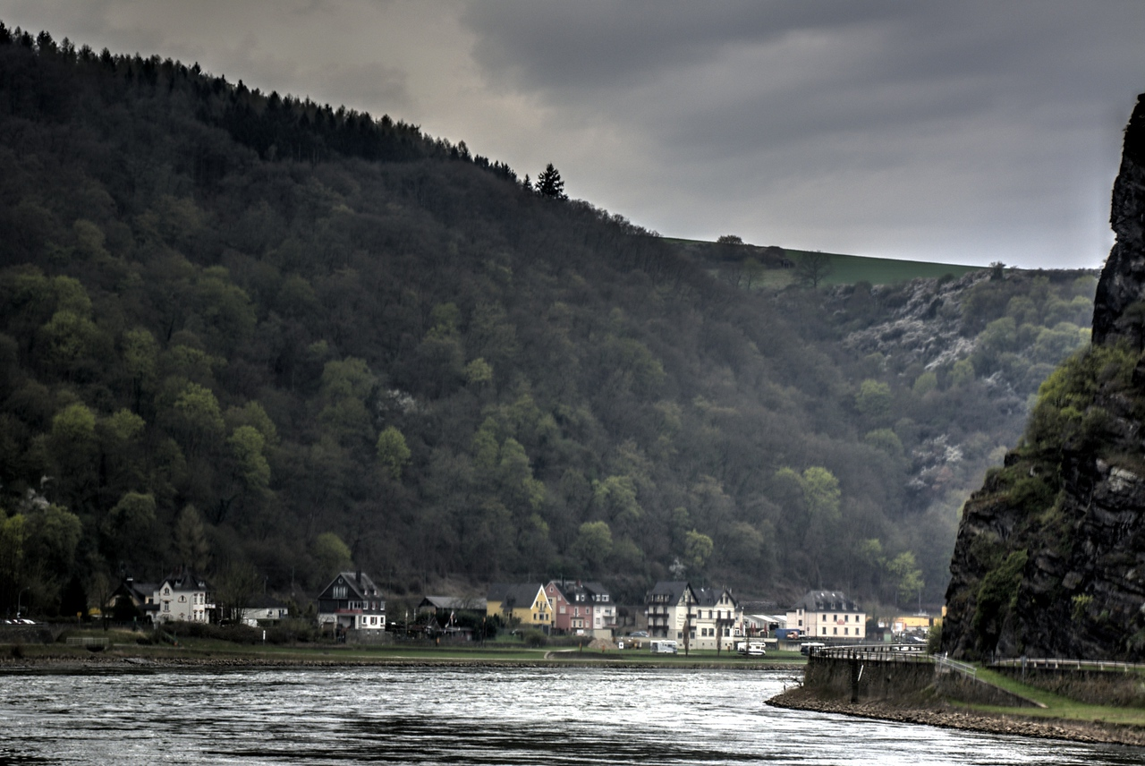 River bend in the Rhine Gorge