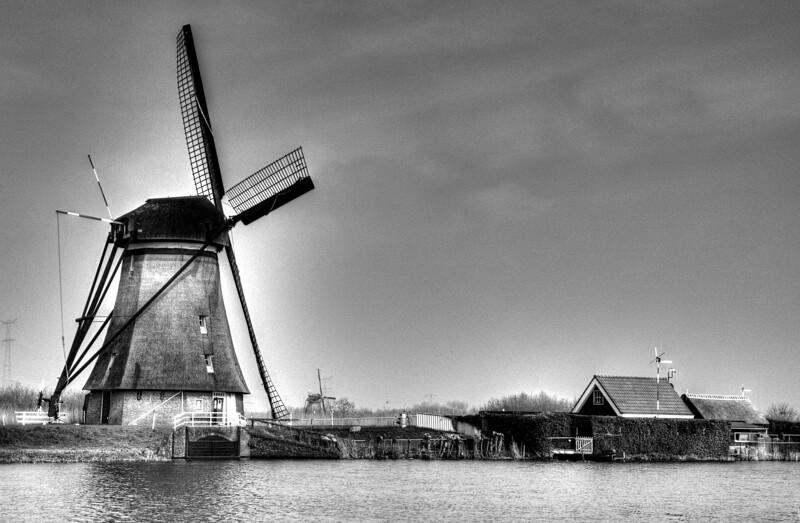Kinderdijk Farm with Windmill