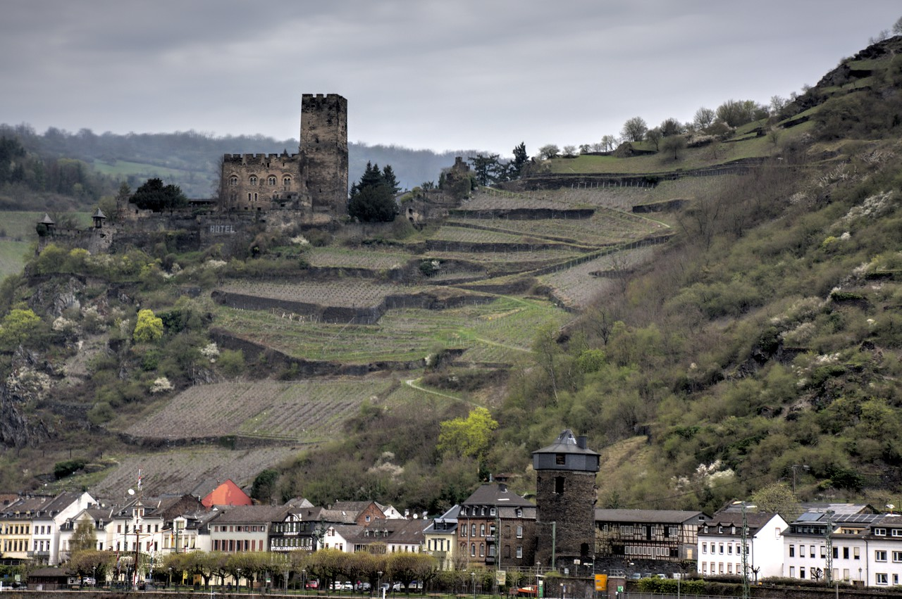 Castle Gutenfels with its terraced vineyards