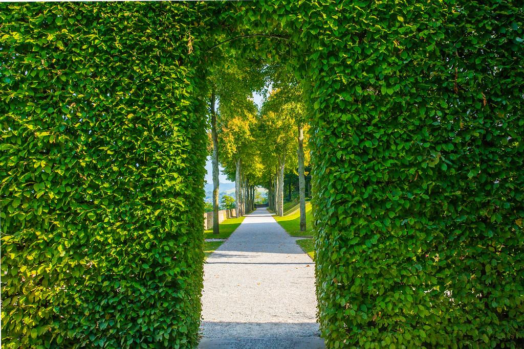 Convent Garden