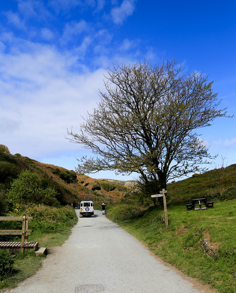 The Road to Tintagel Castle