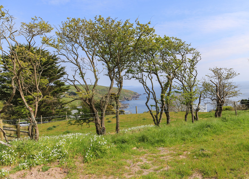 The Hike from Polperro to Looe