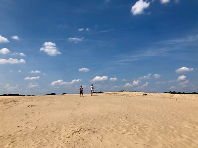 Ella and Elias on a sand dune in the Hoge Veluwe National Park