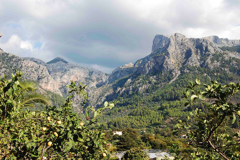 The view of the Serra de Alfabia from our cottage.