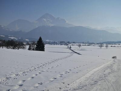 snowy scenery at Wängle, Reutte in Tirol - 25/02/13.
