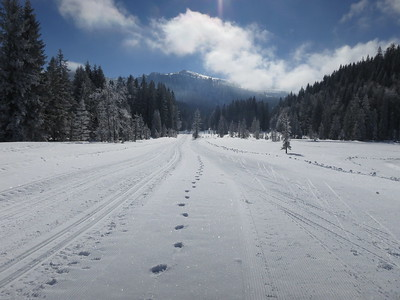 Beautiful tracks, Hindenburghütte - 19/02/18