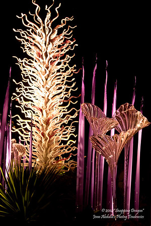 Chihuly in the Garden - Nighttime 3-2014
