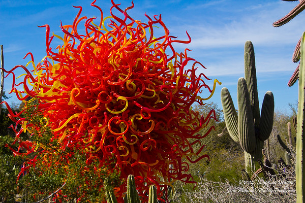 Chihuly in the Garden - Daytime 2-2014